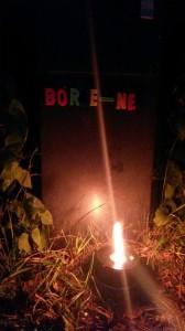 borje_net30